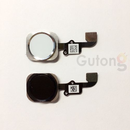 iPhone 6 Homebutton Flex Kabel